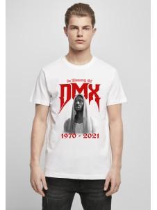 DMX Memory White